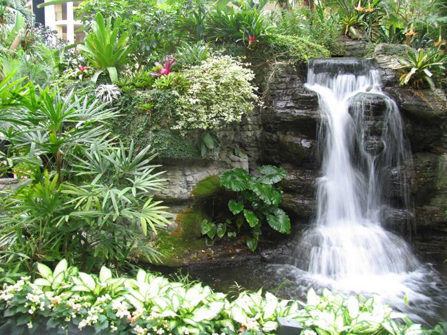 garden-pond-type-2