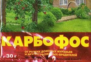 karbofos-ot-tarakanov