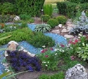 Названия растений для сухого ручья