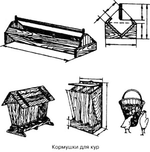 kormushka55