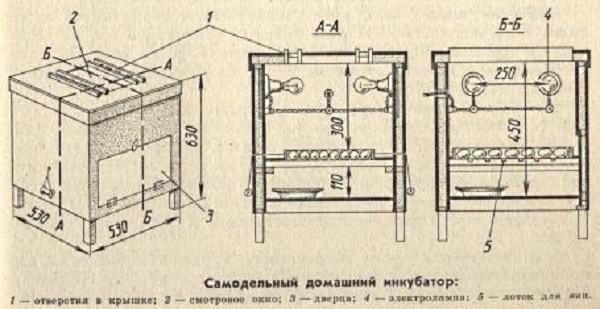 Размеры инкубатора своими руками