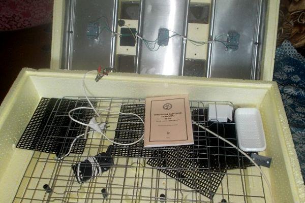 Инкубатор «Золушка» на 98 яиц автоматический.