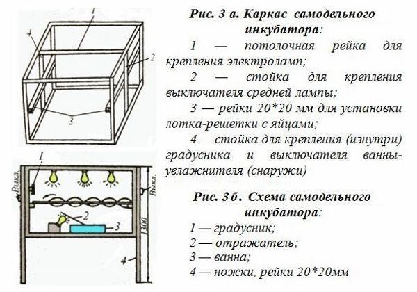inkubator-svoimi-rukami_1