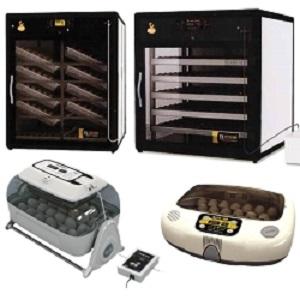 inkubators_25055555