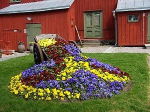 Идея для клумбы в саду