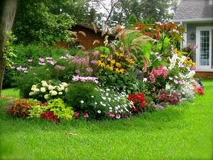 Удачная идея красивого цветника