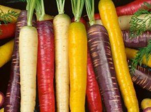 Сорт Rainbow F1 дает возможность одновременно вырастить белые, фиолетовые, желтые и оранжевые плоды