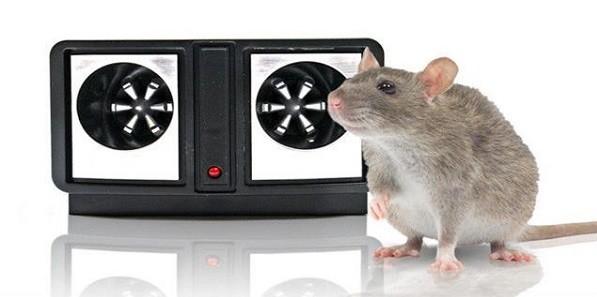 Неплохой вариант - приобрести аппарат, отпугивающий грызунов, особенно он эффективен в осенний период, когда целая армия мышей стремится спрятаться в тепле