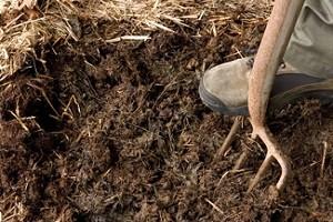 Перебивка компоста