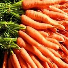 Урожайность «Калисто F 1» - 5 – 6 кг/м2