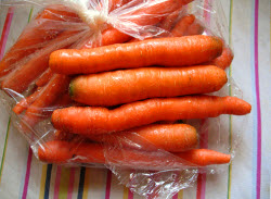 carrot_clamping2