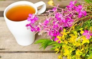 Иван-чай в народной медицине применяется в виде чаев, настоев и отваров