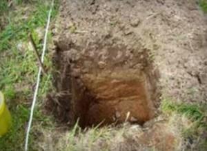 Скважины можно сделать с помощью лопаты или садового бура