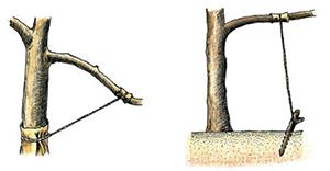 Перетяжка дерева