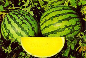 Такой плод имеет низкую калорийность – его энергетическая ценность 38 ккал на 100 грамм