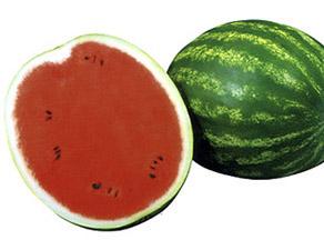 """Арбуз """"Топ-Ган"""", плод овальный и отличается высоким содержанием сахора"""