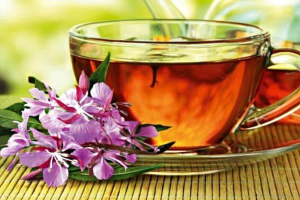 Чай наполняет организм энергией