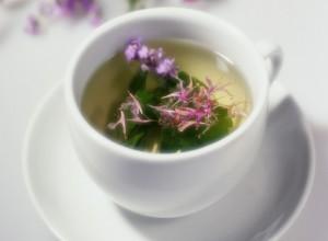 Иван-чай увеличивает процесс выработки молока в период лактации