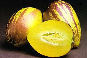 Груши Берта описание вкуса которых напоминает дыни