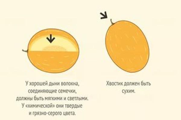 Сухой хвостик дыни - признак спелости плода
