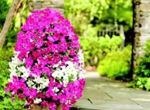 Вертикальные клумбы и цветники своими руками фото