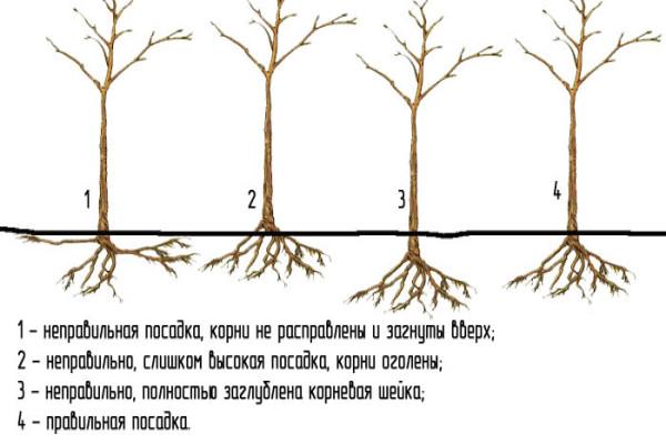 схема8