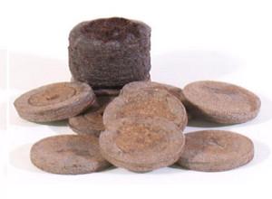 Так выглядят торфяные таблетки для выращивания рассады петунии
