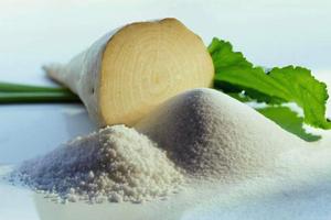 Что нужно знать о сахарной свекле