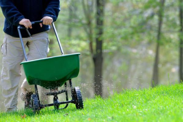 Внесение удобрений для газона