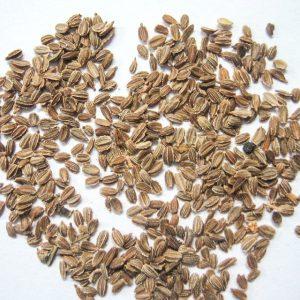 Семена фрезии