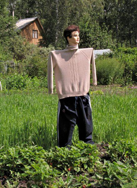Огородный Кен