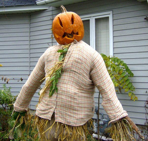Осенний гость