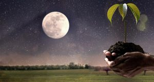 лунный календарь огородника на 2018