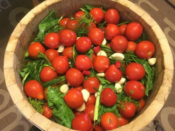 рецепты засолки томатов на зиму