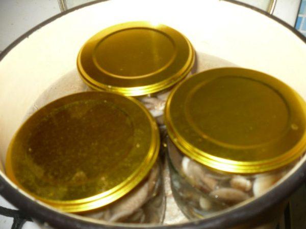 что можно сделать с грибами на зиму