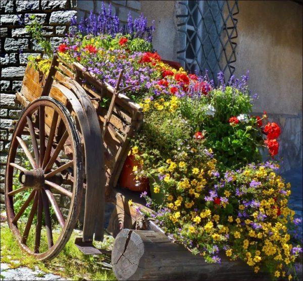 Старая тележка с цветами