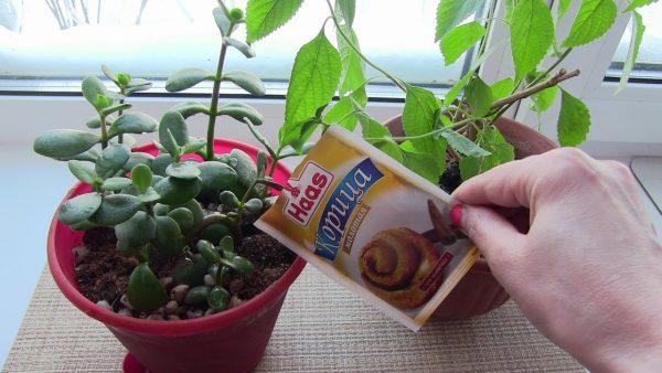 корица для растений
