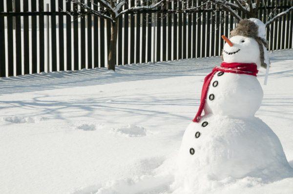 Почти шагающий снеговик