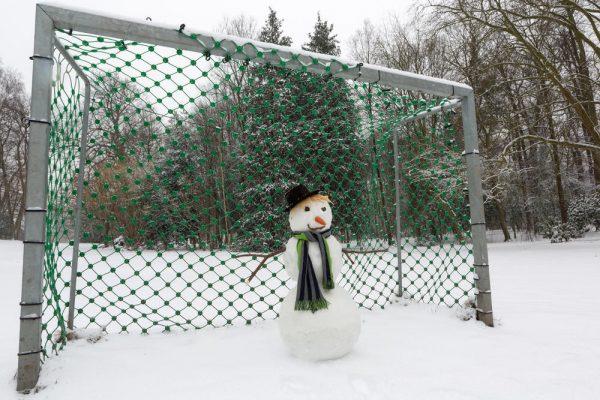 Снеговик в воротах