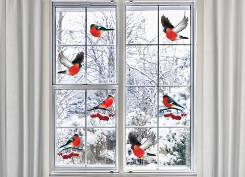 Снегири на окне
