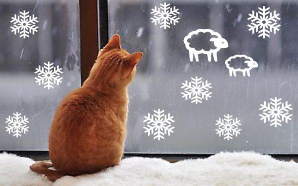 Кот смотрит на снежинки на окне