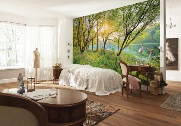 Фотообои с изображением леса