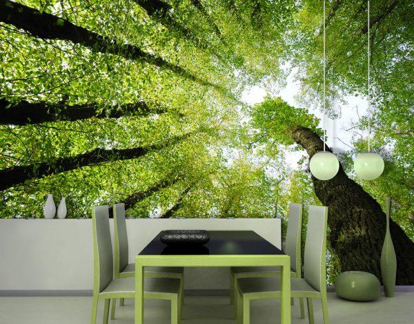 Зелёное дерево на фотообоях