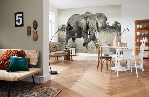 Большой слон на стене на фотообоях
