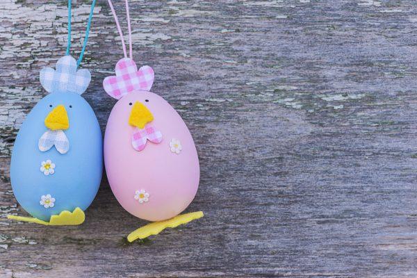 Курочки из яиц