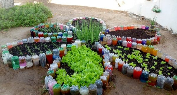Грядки из пластиковых бутылок