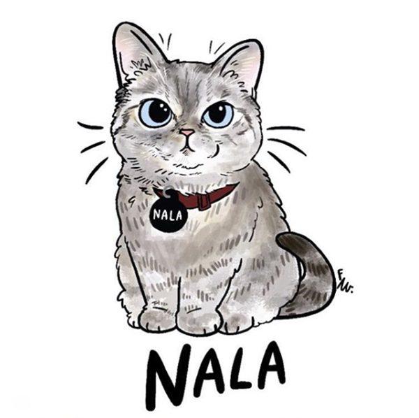 кошка Нала