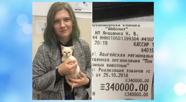 Незнакомка, оплатившая долг приюта в 340 тысяч рублей