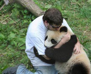 обниматель панд