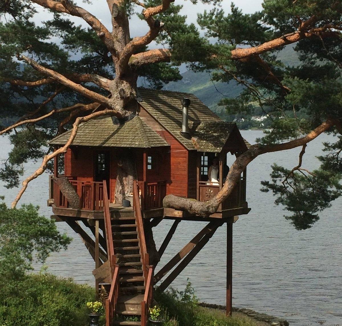 Картинки домиков с дерева